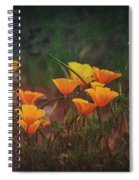 Spring In A Poppin' Spiral Notebook