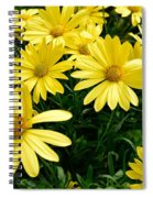 Spring In Bloom Spiral Notebook