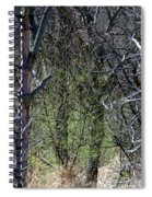 Spring In The Timber Spiral Notebook
