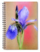 Spring Iris 2 Spiral Notebook