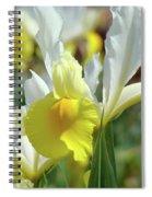 Spring Irises Flowers Art Prints Canvas Yellow White Iris Flowers Spiral Notebook