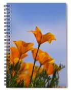 Spring Is A Poppin' Spiral Notebook