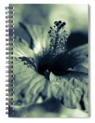 Spring Is Coming - Monochrome Spiral Notebook
