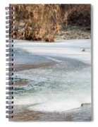 Spring Is Coming. The Ice Melts. Spiral Notebook