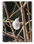 Spring Is On The Way Spiral Notebook