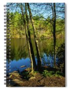Spring It The Woods Spiral Notebook