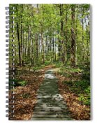 Spring Light And Shadow Spiral Notebook