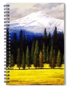 Spring Meadow Mount Brokeoff Spiral Notebook