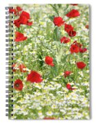 Spring Meadow With Poppy And Chamomile Flowers Spiral Notebook