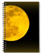 Spring Moon Rising Spiral Notebook