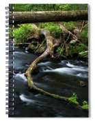Spring Morning At Crum Elbow Creek I Spiral Notebook