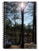 Spring Morning Spiral Notebook