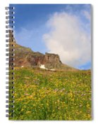Spring Mountain Spiral Notebook