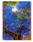 Spring Oak Spiral Notebook