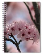 Spring On The Air Spiral Notebook