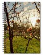 Spring Orchard In Williamsburg Spiral Notebook