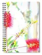Spring Pastel Spiral Notebook