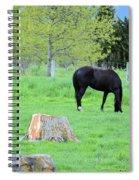 Spring Pastures Spiral Notebook