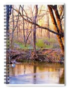 Spring, Pennypack Creek, Pennsylvania Spiral Notebook