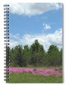 Spring Phlox Spiral Notebook