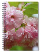 Spring Pink, Green And White Spiral Notebook