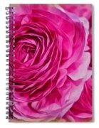Spring Pink Roses Spiral Notebook