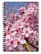 Spring Pink Tree Blossoms Art Print Baslee Troutman Spiral Notebook
