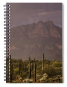 Spring Rain In The Sonoran  Spiral Notebook