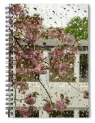 Spring Rain Outside The Window And Sakura Spiral Notebook