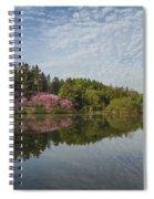 Spring Redbud Trees Spiral Notebook