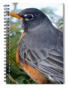 Spring Returns Spiral Notebook
