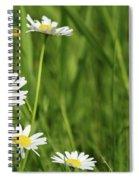 Spring Scene White Wild Flowers Spiral Notebook