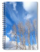 Spring Sky And Cotton Trees Spiral Notebook