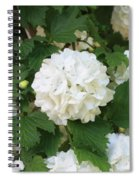 Spring Snowball Spiral Notebook