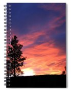 Spring Spectacle Spiral Notebook