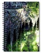 Spring Sprung  Spiral Notebook