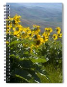 Spring Sunflowers Spiral Notebook