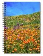 Spring Superbloom In Walker Canyon Spiral Notebook