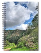 Spring Trail In The Canyon Spiral Notebook