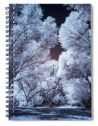 Spring Trees And Shadows Spiral Notebook