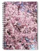 Spring Trees Art Prints Pink Springtime Blossoms Baslee Troutman Spiral Notebook
