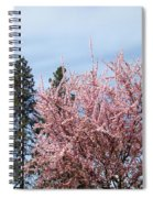 Spring Trees Bossoming Landscape Art Prints Pink Blossoms Clouds Sky  Spiral Notebook