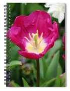 Spring Tulips 186 Spiral Notebook