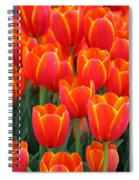 Spring Tulips 206 Spiral Notebook