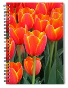 Spring Tulips 207 Spiral Notebook