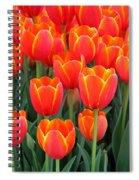 Spring Tulips 210 Spiral Notebook