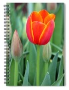 Spring Tulips 211 Spiral Notebook