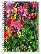 Spring Tulips Spiral Notebook