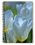 Spring Tulips Spiral Notebook