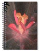 Spring Tulips - Photopower 3105 Spiral Notebook